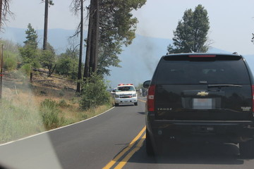 パトカーや消防車が到着