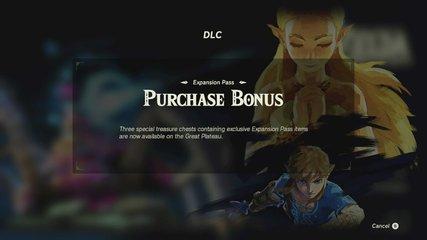 DLC購入