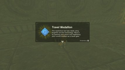 Travel Medallion