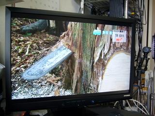 地デジチューナー+XRGB-3の映像