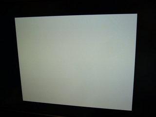 画面真っ白のヴァンパイア